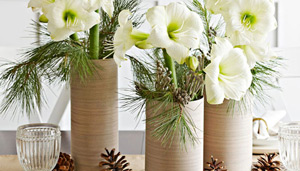 Centerpiece with vases