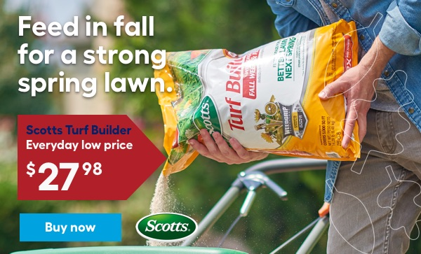 Feed in fall for a strong spring lawn. Scotts Turf Builder Everyday low price $27.98.