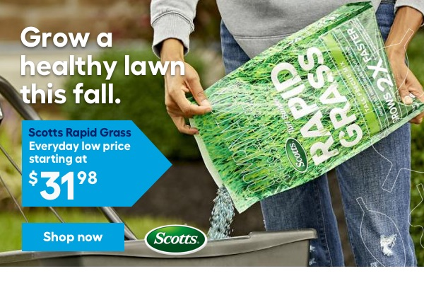 Grow a lush lawn. Scotts Rapid Grass. Everyday low price starting at $31.98.